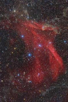 Lac Nebula Complex (Sh2-126, LBN 437, LBN 438, ...) Sharpless 126 (Sh2-126) is a large emission nebula in Lacerta. The source of its ionization is the intense ultraviolet radiation of the star 10 Lacertae, a blue main sequence star of spectral class O9V. LBN 437 is a molecular cloud, its densest part is associated with some bright young stars, among which stands out LkHα 233, also known as variable star V375 Lacertae  - via  Thomas Henne - www.distant-lights.at