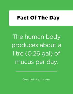 The human body produces about a litre gal) of mucus per day. Fact Of The Day, Human Body, Facts, Image, The Human Body, Truths