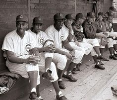 Wonderful shot of the 1962 Chicago Cubs in the dugout. L-R: Ernie Banks, Billy Williams, George Altman, and Ron Santo