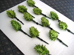 DIY Boutonniere Hops for Weddings - 5  Hops Cones w/Stems and Wires - Beer Wedding Flowers - Beer Boutonnieres by BlackCreekHops on Etsy https://www.etsy.com/listing/191612567/diy-boutonniere-hops-for-weddings-5-hops