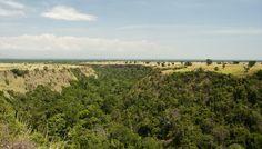 Kyambura Gorge. Landskabet i slugten er betagende og der er adskillige pattedyr og fugle der hører hjemme her.