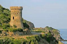 Corsica - Tours Génoises Corse - Cagnano - La Tour de Losso (ou Tour de L'Osse) est une tour génoise ronde du xvie siècle, située sur le littoral à l'extrême sud-est de la commune. Elle était autrefois nommée Torre dell'Aquila (tour de l'aigle ou de l'acula di mare qui signifie balbuzard pêcheur en langue corse).