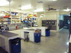 Veterinary hospital treatment room