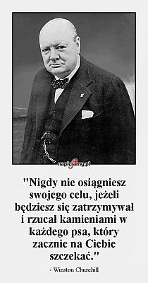 Rozne na Stylowi.pl Wall Quotes, Motivational Quotes, Inspirational Quotes, Fight For Your Dreams, Powerful Words, Pregnancy Tips, Better Life, Self Improvement, Motto