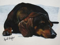 Pastel Drawing Dachshund Dog Pet Fine Art by autumnlaneartistry, $5.00