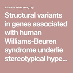 Structural variants in genes associated with human Williams-Beuren syndrome underlie stereotypical hypersociability in domestic dogs | Science Advances
