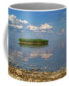 Reed island on the lake on sunny summer day. Nature Artists, Nature Artwork, Mugs For Sale, Pin Pin, Travel Photographer, Botanical Art, Basic Colors, Great Artists, Painted Rocks