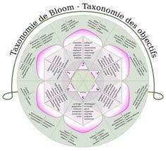 Taxonomie de Bloom — Wikipédia