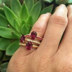 Fabergé launched a colourful collection of fluted engagement rings set with rubies, sapphires and emeralds in rose gold. Discover our favourite engagement rings of 2016, both diamond and gemstones that are prefect for the wedding and bridal jewellery season: http://www.thejewelleryeditor.com/bridal/article/best-engagement-rings-2016/ #jewelry