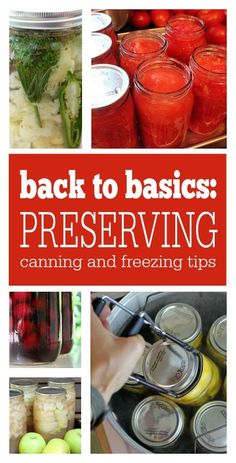 Back to Basics: Preserving. Learn all the basics of preserving: canning, freezing, and equipment suggestions!