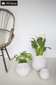 Less is more they say. Less Is More, Planter Pots, Collection, Home, Decor, Decoration, Ad Home, Homes, Decorating