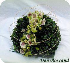 bloemstukje met buxus en Helleborus bloemschikken bloemen winter soorten bloemen
