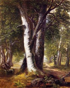 painting Techniques Trees – Woodland Path 18451850 Painting Asher B Durand Oil Paintings – Home Decorations Best Oil Painting Trees, Oil Painting On Paper, Oil Painting Supplies, Oil Painting Pictures, Acrylic Painting Techniques, Artist Painting, Oil Paintings, Learn Painting, Art Techniques