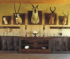 Taxidermy Display, Game Lodge, Trophy Rooms, Basement Plans, Rustic Room, Western Furniture, The Best Is Yet To Come, Bars For Home, Lodges