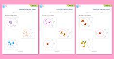 Mathématiques maternelle, Associer une quantité à une constellation de dé | Comparer les collections