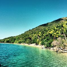 Do you daydream about running away to a tropical island with crystal clear water and coconut palms?How does this do it for you?  Click to book your trip to Fitzroy Island and create some memories! www.fitzroy-island.com.au #fitzroyisland margretesater #cairns