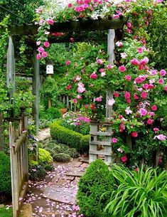 P O T A G E R: 5 Garden Photo Ideas to Steal From the Pros Garden Garden backyard Garden design Garden ideas Garden plants Small Gardens, Outdoor Gardens, Amazing Gardens, Beautiful Gardens, The Secret Garden, Cottage Garden Design, Rose Garden Design, Backyard Cottage, Small Rose Garden Ideas