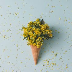ice cream cone with yellow flowers and leaves summer minimal concept
