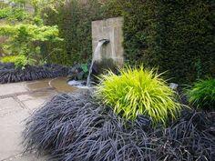 Black Mondo Grass & japanese Forest Grass