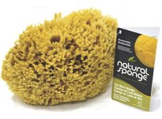 For paint sundry use, faux finishing, general cleaning and bathing. Soft, pliable and absorbent. Natural Sea Sponge, Bath Sponges, Golden Color, Kitchen Items, Lana, Dog Food Recipes, It Is Finished, Cleaning, Highlights