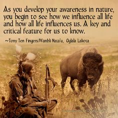 As you develop your awareness in nature you begin to see how we influence all life and how all life influences us | Anonymous ART of Revolution