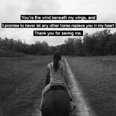 In loving memory of five me a mercy!!  Love that horse I couldn't of asked for any thing better than him!!
