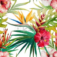 Beautiful vector pattern with nice watercolor tropical flowers Stock Vector