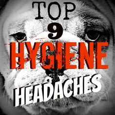 English Bulldog Care <The Top 9 Hygiene Headaches Solved!> We'll show you how to care for your Bulldog (the right way)