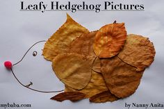 Autumn Leafy Hedgehog Pictures | Nanny Anita | My Baba Things To Do Inside, Fun Things, Crafts To Do, Crafts For Kids, Arts And Crafts, Autumn Trees, Autumn Leaves, Autumn Crafts, Hedgehog