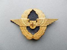 swiss-af-officers-capwing.large.jpg (321×241)