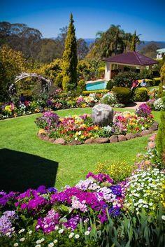 Another award-winning garden at Toowoomba& Carnival of Flowers., Another award-winning garden at Toowoomba& Carnival of Flowers. Outdoor Landscaping, Outdoor Gardens, Amazing Gardens, Beautiful Gardens, Gardens Of The World, Beautiful Flowers Garden, Garden Cottage, Parcs, Dream Garden