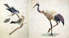 Beautiful bird collages by Jason LaFerrera
