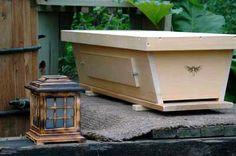 BackYard Hive Original Top Bar Hive Fully Assembled