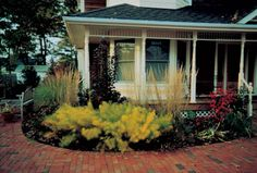 Beautiful home appeal Natural curb appeal Water Wise Landscaping, Landscaping Ideas, Outdoor Water Features, Native Gardens, Pond Waterfall, Curb Appeal, Landscape Design, Beautiful Homes, Wildlife