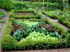 """Képtalálat a következőre: """"veteményes kert"""""""