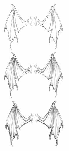 devil heart with dragon wings drawing. how to draw dragon wings. Art Drawings Sketches, Easy Drawings, Easy Dragon Drawings, Kopf Tattoo, Demon Wings, Bat Wings, Hanya Tattoo, Dragon Art, Dragon Wing