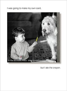 Now, who looks the most guilty here? Going To Make My Own Card  -  Funny Birthday Card