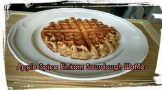 Apple Spice Einkorn Sourdough Belgian Waffles         -   Use your favorite sourdough starter      -            COMBINE in a large bowl : 2 cups EINKORN ALL PURPOSE FLOUR   *   1 1/2 tsp BAKING POWDER    *  1/2 tsp sea salt    *    1 Tbsp EVOO or COCONUT OIL     *      2 tsp CINNAMON     *     1/2 tsp NUTMEG     *     1/4 tsp GROUND CLOVES     *    In  small bowl COMBINE :   2 EGGS   *     2 Tbsp COCONUT PALM SUGAR or BROWN SUGAR        *      1/2 cup SOURDOUGH STARTER    *     1 cup MILK (…