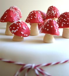 Edible, Chocolate Filled Toadstools