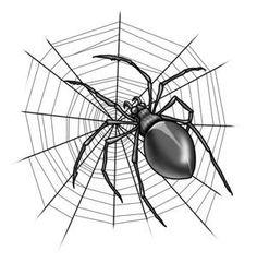 (Otto) Gambe in Spalla – Modelli Matematici Discreti | Math is in the air