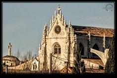 #Catedral y #Cristo , #Palencia  #Casi360 fotografia