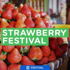 Strawberry Festival La Trinidad, Benguet