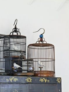 Villa on Saint Barthelemy, The bird cage is equally a property for the chickens and an attractive tool. You can choose anything you want on the list of bird cage designs and get a lot more special images. Villa Design, House Design, Antique Bird Cages, Greige, Island Villa, Asian Interior, Chinese Furniture, Design Fields, Displaying Collections