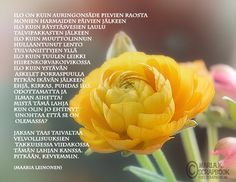 Runot 2 - Marlan kuvat Finnish Words, Poems, Thoughts, Rose, Flowers, Plants, Pink, Poetry, Verses