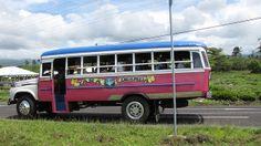 Tara Lacinda, Samoa Bus.