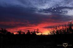 #Metamorphosis #Sunburn #Casablanca #Chile #Roadtrip #Nature #Landscape #Sunset #Sky #Impulse #Earth #Miss #Miri #Travel #Photography #Colours