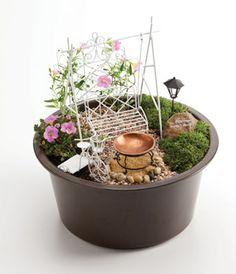 Mini Fairy Garden that Santa gave me, it will be so much fun becoming a Fairy Gardener!!!!