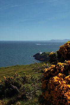 Howth, Ireland Copyright: Chris Kwasnicki