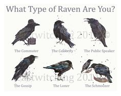 RAVEN  Print  The Ravenometer Personality Guide  by eastwitching, $35.00