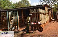 Die Abendliche Vorbereitung im Elefantenwaisenhaus. Jeder kleine Elefant ein einen eigenen Stall. Vor ihrer Ankunft am Abend werden dort schon die Milchflaschen verteilt. Aga, Baby Cubs, January, Elephants